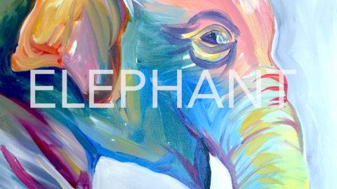 July 15th, 2017: Elephant Canvas @ Studio 614