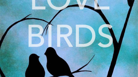 "Feb 11th, 2017: ""Birds"" – Canvas Painting Class @ Studio 614"