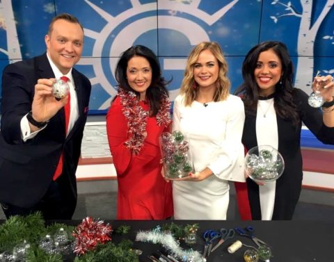 Easy DIY Christmas Ornaments with Megan Pando on Good Day Columbus {Fox 28} – 12/23/18